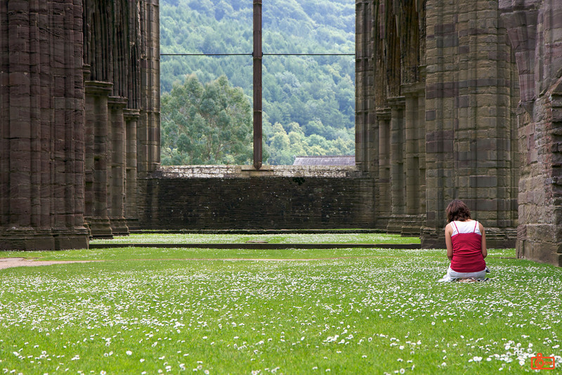 Tintern Abbey. This abbey was built in the 12th Century, but it fell into disrepair starting in the 16th Century. This was due to the changes brought by King Henry VIII, including the formation of the Church of England. This is one of my favourite shots ever.<br /> IMG_4069