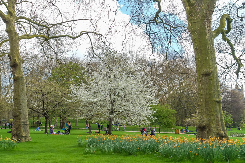 "A lovely Spring day at St. James park.<br><br>  St James's Park is a 23-hectare (57-acre) park in the City of Westminster, central London. The park lies at the southernmost tip of the St James's area, which was named after a leper hospital dedicated to St James the Less. The park is the most easterly of a near-continuous chain of parks that comprises (moving westward) Green Park, Hyde Park, and Kensington Gardens.[1][2][3]  The park is bounded by Buckingham Palace to the west, the Mall to the north, Horse Guards to the east, and Birdcage Walk to the south. It meets Green Park at Queen's Gardens with the Victoria Memorial at its centre, opposite the entrance to Buckingham Palace. St James's Palace is on the opposite side of The Mall. The closest London Underground stations are St James's Park, Green Park, Victoria, and Westminster. (<a href=""https://en.wikipedia.org/wiki/St_James%27s_Park"">Wikipedia</a>)"