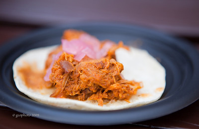 Mexico City, Mexico - Corn Tortilla Filled with Shredded Pork and Purple Onions