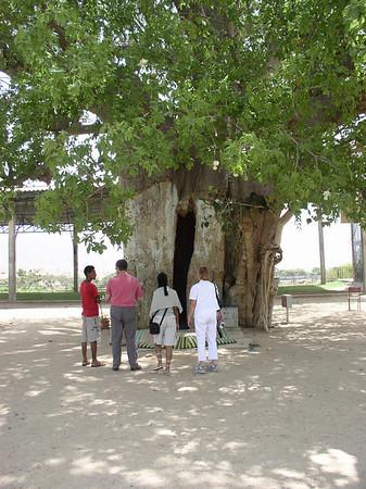 Eritrea - Trip to Keren