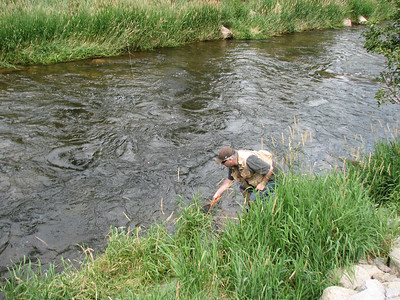 Trevor helping retrieve, Dan's first ever fly caught fish! August 14th 2010! Big Thompson River near Estes Park Colorado.