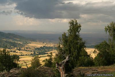 Bale Mountains_14