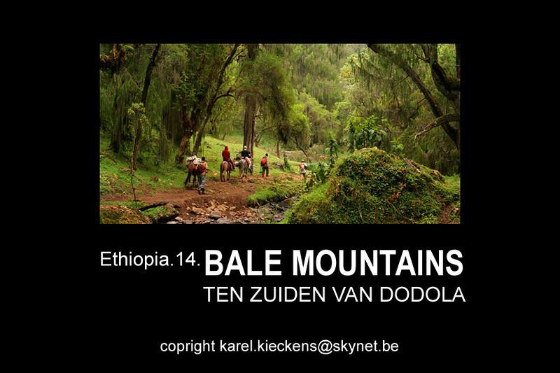 Bale Mountains_01