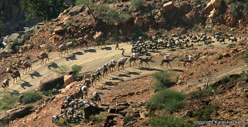 02 Karavaan daalt af van Tigray hoogplateau