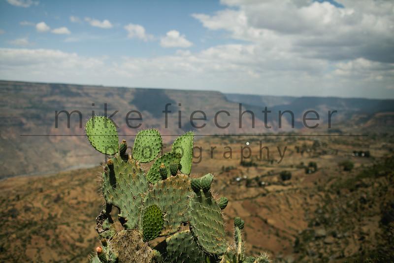 Ethiopia 2012-0416