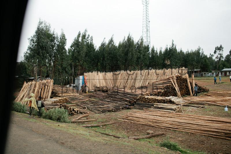 Ethiopia 2012-1528