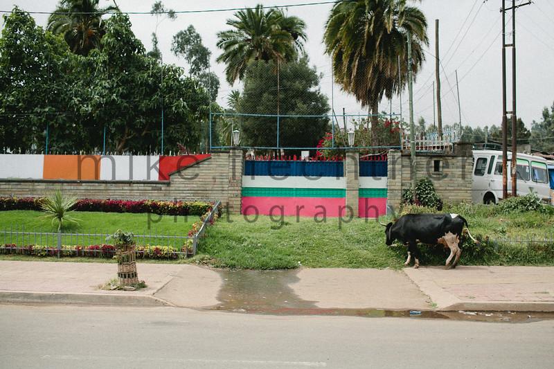 Ethiopia 2012-1511