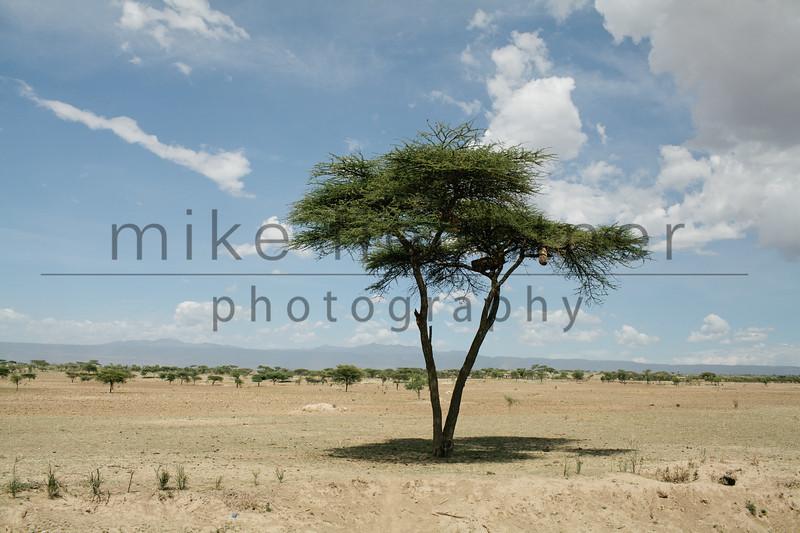 Ethiopia 2012-1042