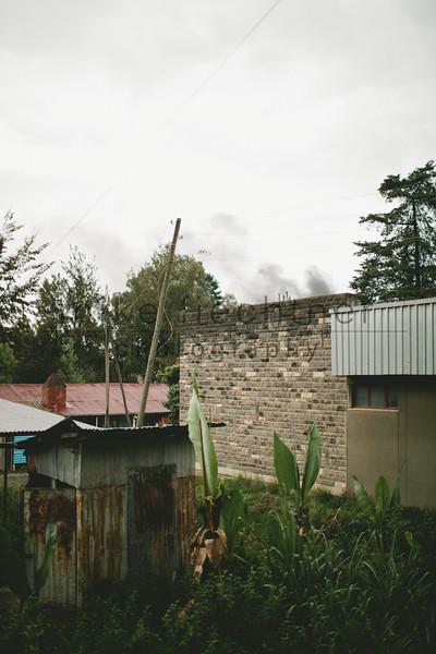 Ethiopia 2012-0472