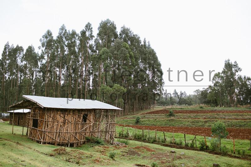 Ethiopia 2012-1521