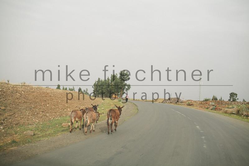 Ethiopia 2012-1656