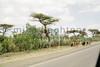 Ethiopia 2012-1036
