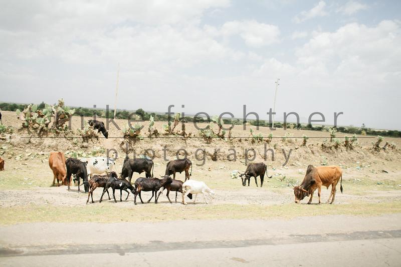 Ethiopia 2012-1021