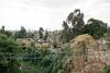 Ethiopia 2012-0658