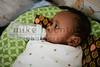 Ethiopia 2012-1401