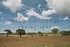 Ethiopia 2012-1045