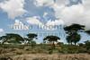 Ethiopia 2012-1044