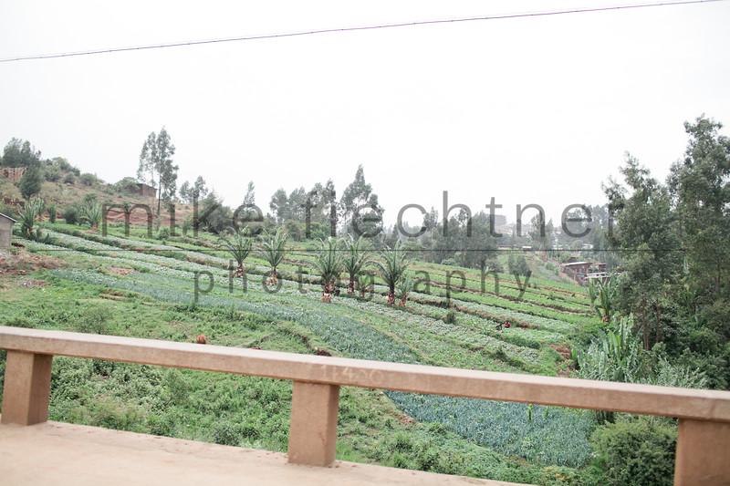 Ethiopia 2012-1516
