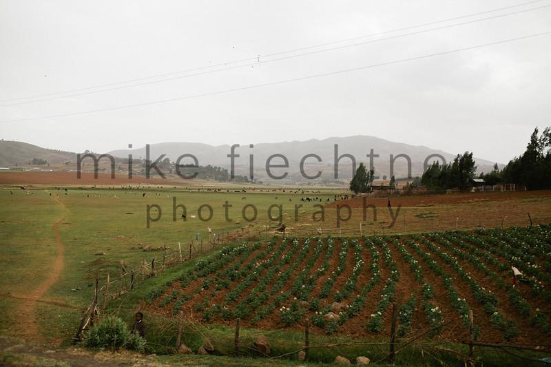 Ethiopia 2012-1527