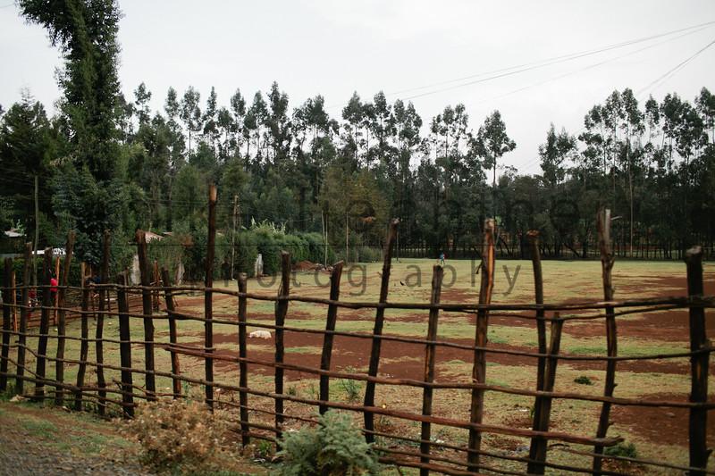 Ethiopia 2012-1520