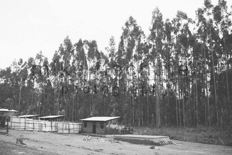 Ethiopia 2012-1522