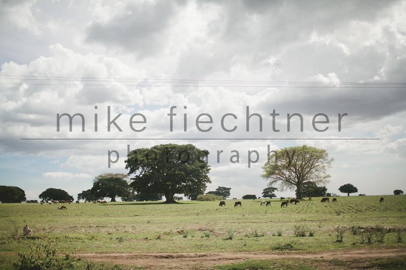 Ethiopia 2012-1055