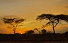 Sunset at Mago National Park, savanna.