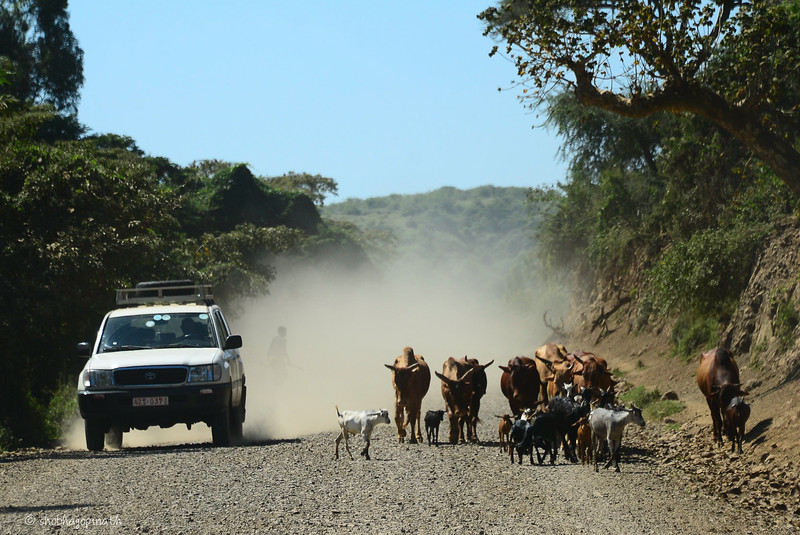The road to Konso