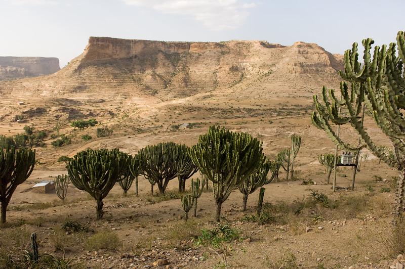 Ethiopia -155