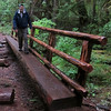 Nelson crosses the log bridge