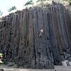 Skinner Butte basalt columns