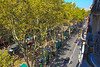 View of Las Ramblas from our hotel balcony