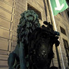 One of the lions in front of the Residenz.