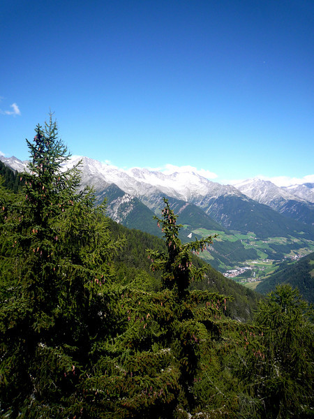 Green trees and snow capped mountains....fantastic!