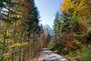 Road in the Austrian Alps
