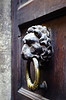 Door knocker. Florence, Italy.