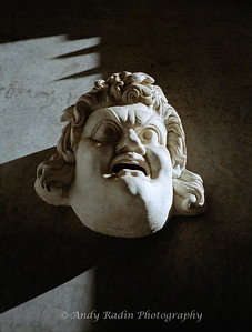 Vatican Head