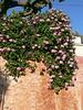 Crete in the spring - beautiful!