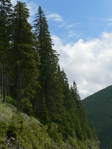 Crossing the Prislop Pass