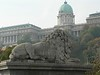 One of the lion's on the chain bridge