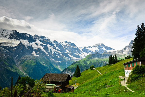 Alpine meadows in the Bernese Alps Murren Switzerland