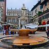 Piazza Erbe - The Fountain of Our Lady Verona