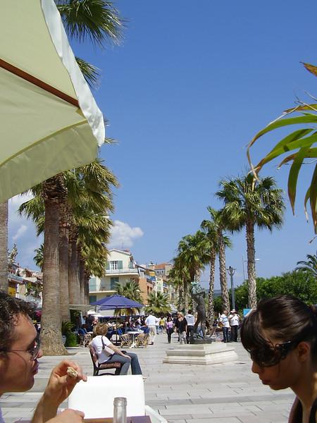 Palm trees in Bandol.