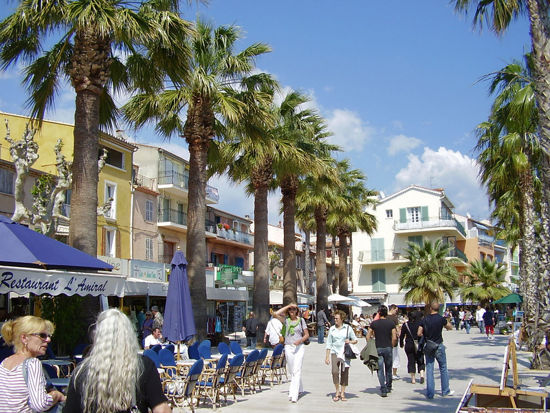 Palm trees in Bandol. Nella and Muriel are at the lower left.