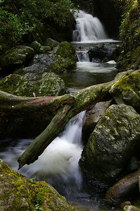 Spinkwee River cascade, Tollymore Forest park co. Down tfp-01