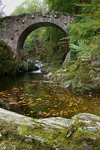 Foley's Bridge Tollymore Forest Park co. Down TFP-07