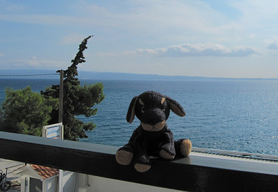 View from my patio with my travel buddy-Stobrec, Croatia