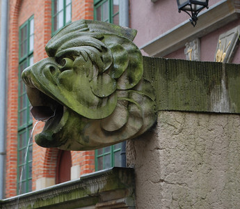 Love their gutter spouts. Gdansk, Poland