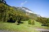 "Taken at Latitude/Longitude:46.715048/8.197315. 0.27 km South-West Rohrmatten Bern Switzerland <a href=""http://www.geonames.org/maps/google_46.715048_8.197315.html""> (Map link)</a>"