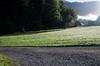 "Taken at Latitude/Longitude:46.715112/8.197417. 0.26 km South-West Rohrmatten Bern Switzerland <a href=""http://www.geonames.org/maps/google_46.715112_8.197417.html""> (Map link)</a>"